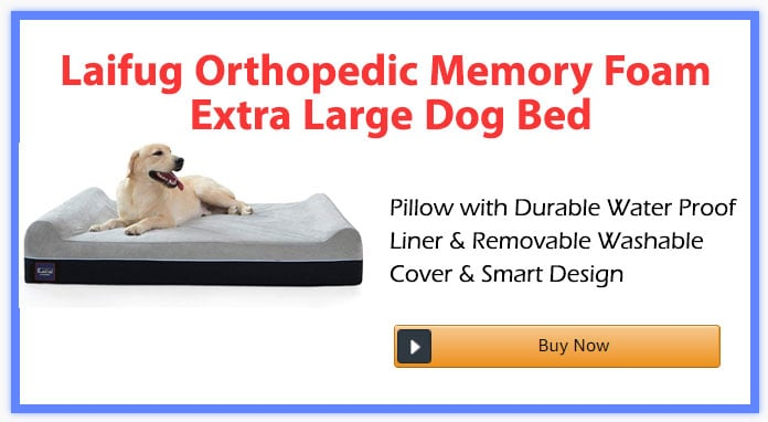 Laifug Orthopedic Memory Foam Extra Large Dog Bed