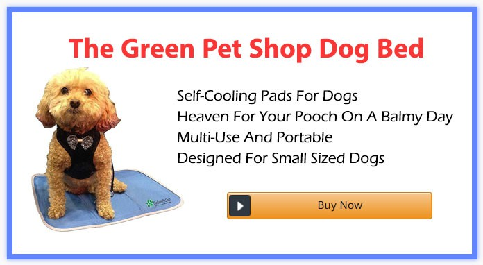 The Green Pet Shop Dog Bed